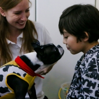 Chile Autism Dogs